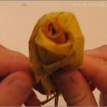 bouquet _22